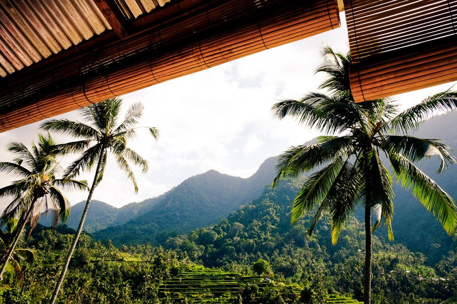Rice terrace and mountain view from a restaurant in north Bali
