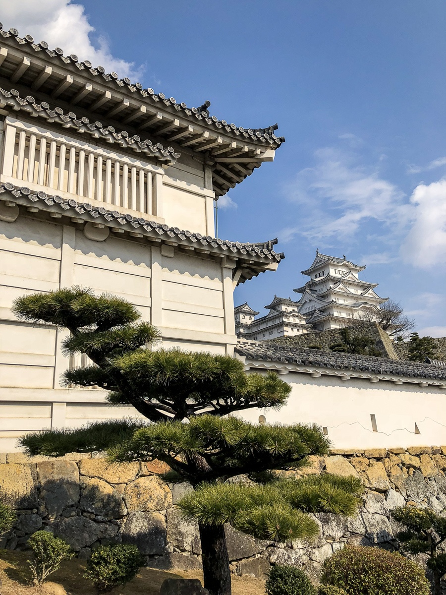 Wall and main keep in the distance at Himeji Castle in Japan