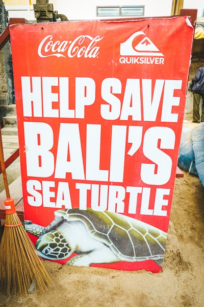 BSTS sign at the Sea Turtle Release in Kuta, Bali