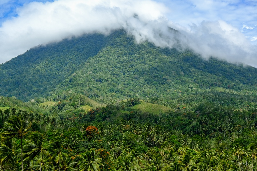 Mountains and jungle at the Tangkoko Nature Reserve in Sulawesi, Indonesia
