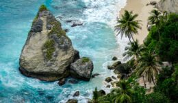 Pointy rock and palm trees at Diamond Beach in Nusa Penida, Bali