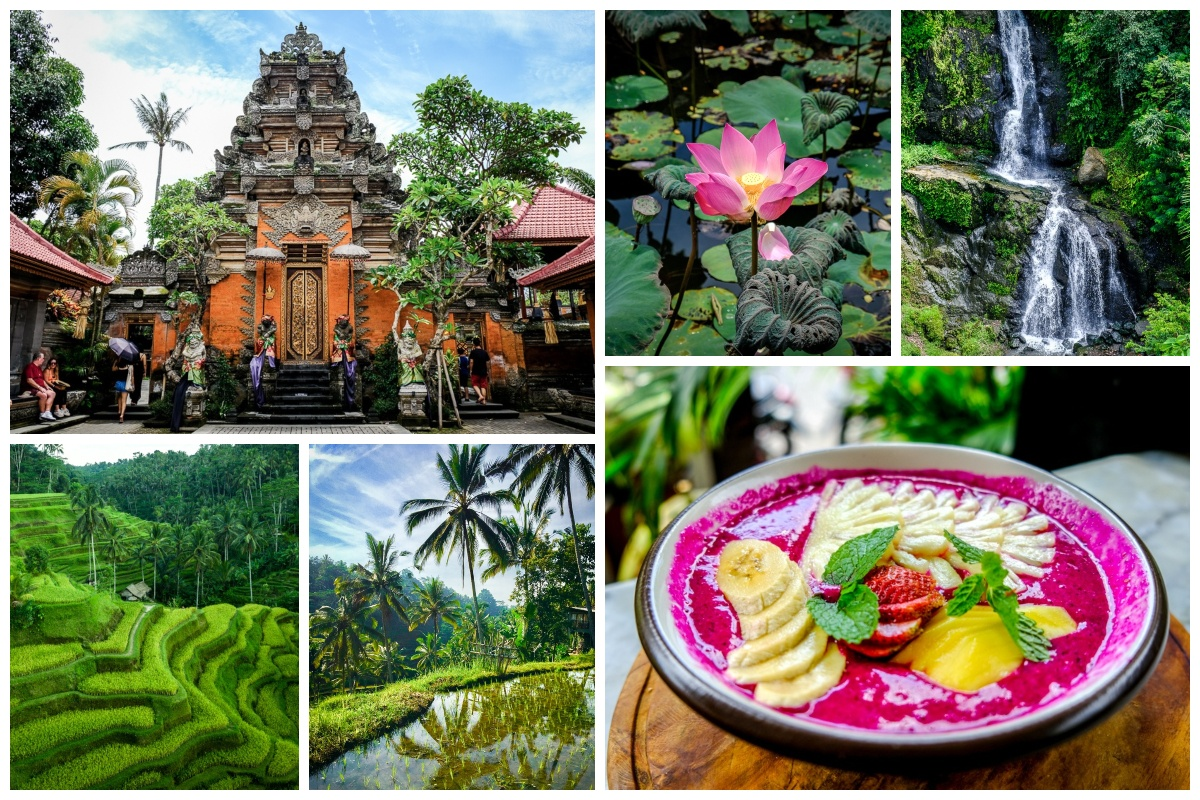 Best Things To Do In Ubud Bali Monkeys Temples Markets